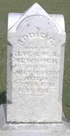 NEWSOCK, ADDIE - Montgomery County, Ohio | ADDIE NEWSOCK - Ohio Gravestone Photos