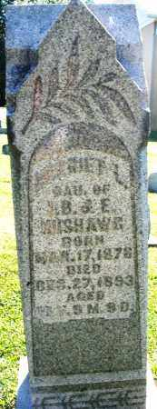 NUSHAWG, HARRIET L. - Montgomery County, Ohio | HARRIET L. NUSHAWG - Ohio Gravestone Photos