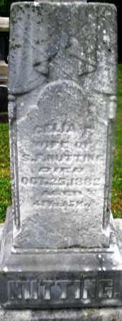 NUTTING, CELIA - Montgomery County, Ohio   CELIA NUTTING - Ohio Gravestone Photos