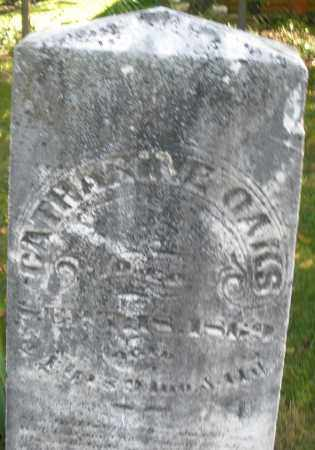 OAKS, CATHARINE - Montgomery County, Ohio | CATHARINE OAKS - Ohio Gravestone Photos