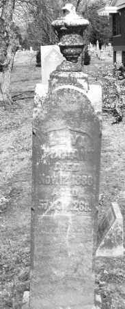 O'BRIANT, LEVI - Montgomery County, Ohio | LEVI O'BRIANT - Ohio Gravestone Photos
