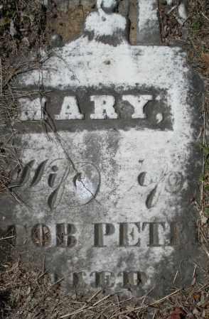 PETREY, MARY - Montgomery County, Ohio | MARY PETREY - Ohio Gravestone Photos