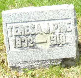 MESKELLY PINE, TERESA J - Montgomery County, Ohio | TERESA J MESKELLY PINE - Ohio Gravestone Photos