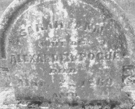 POGUE, SARAH ANN - Montgomery County, Ohio | SARAH ANN POGUE - Ohio Gravestone Photos