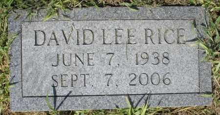RICE, DAVID LEE - Montgomery County, Ohio | DAVID LEE RICE - Ohio Gravestone Photos