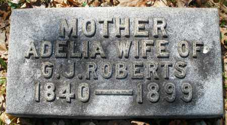 ROBERTS, ADELIA - Montgomery County, Ohio | ADELIA ROBERTS - Ohio Gravestone Photos