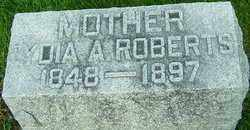 ROBERTS, LYDIA - Montgomery County, Ohio | LYDIA ROBERTS - Ohio Gravestone Photos