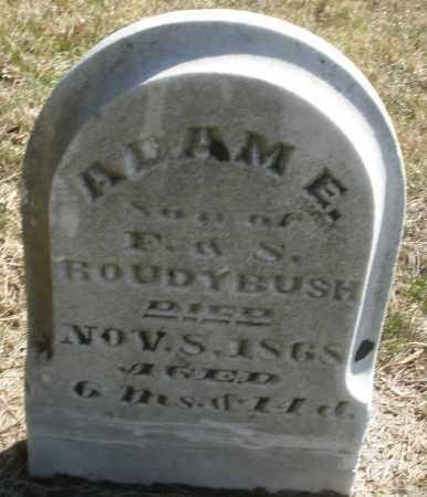 ROUDYBUSH, ADAM E. - Montgomery County, Ohio   ADAM E. ROUDYBUSH - Ohio Gravestone Photos