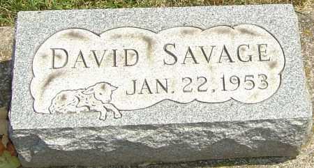SAVAGE, DAVID - Montgomery County, Ohio | DAVID SAVAGE - Ohio Gravestone Photos