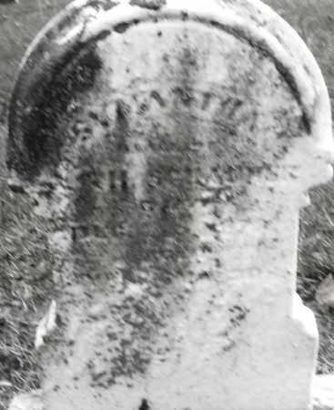 SCHAURER, SAMANTHA ? - Montgomery County, Ohio   SAMANTHA ? SCHAURER - Ohio Gravestone Photos