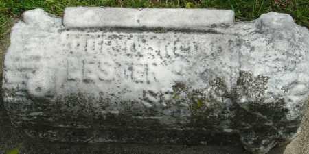 SEARS, LESTER S - Montgomery County, Ohio | LESTER S SEARS - Ohio Gravestone Photos