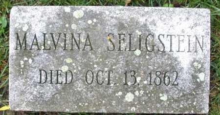 SELIGSTEIN, MALVINA - Montgomery County, Ohio   MALVINA SELIGSTEIN - Ohio Gravestone Photos