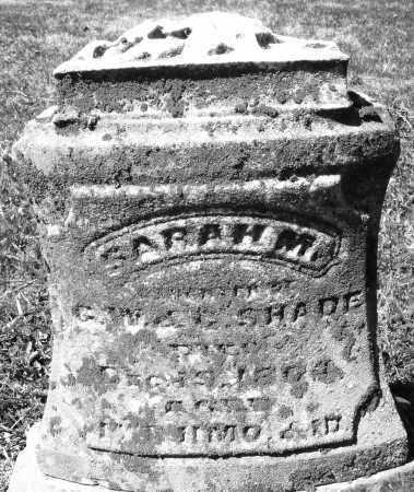 SHADE, SARAH M. - Montgomery County, Ohio | SARAH M. SHADE - Ohio Gravestone Photos