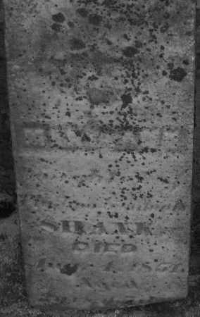 SHANK, MARY ANN - Montgomery County, Ohio | MARY ANN SHANK - Ohio Gravestone Photos
