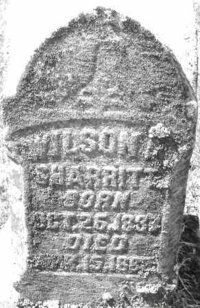 SHARRITT, WILSON - Montgomery County, Ohio | WILSON SHARRITT - Ohio Gravestone Photos