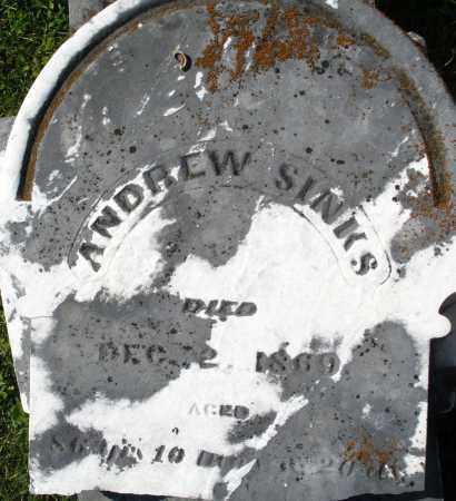 SINKS, ANDREW - Montgomery County, Ohio | ANDREW SINKS - Ohio Gravestone Photos