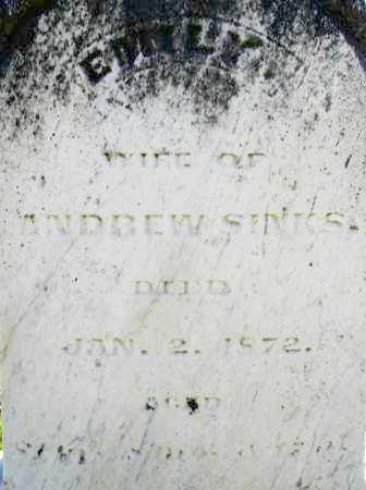 SINKS, EMILY - Montgomery County, Ohio | EMILY SINKS - Ohio Gravestone Photos