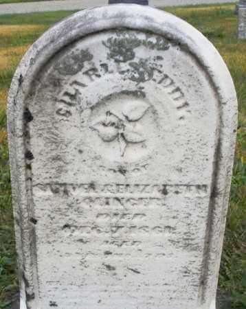 SLINGER, CHARLES EDDY - Montgomery County, Ohio | CHARLES EDDY SLINGER - Ohio Gravestone Photos