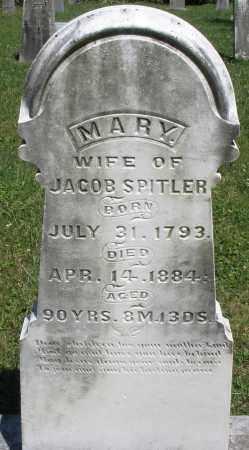 SPITLER, MARY - Montgomery County, Ohio | MARY SPITLER - Ohio Gravestone Photos