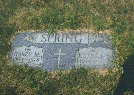 DOWNING SPRING, ESTHER ALBERTO - Montgomery County, Ohio | ESTHER ALBERTO DOWNING SPRING - Ohio Gravestone Photos