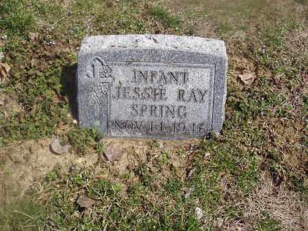 SPRING, JESSIE RAY - Montgomery County, Ohio   JESSIE RAY SPRING - Ohio Gravestone Photos