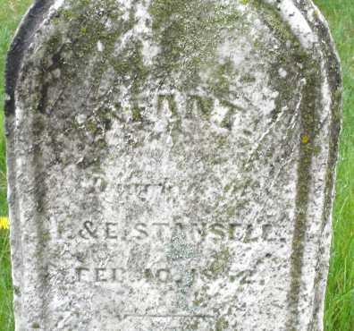 STANSEL, INFANT - Montgomery County, Ohio | INFANT STANSEL - Ohio Gravestone Photos