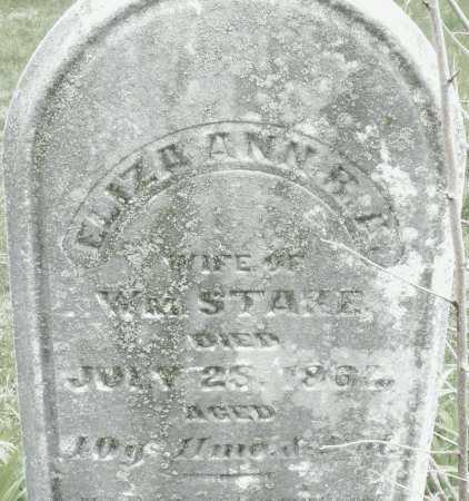 STARE, ELIZA ANN - Montgomery County, Ohio | ELIZA ANN STARE - Ohio Gravestone Photos