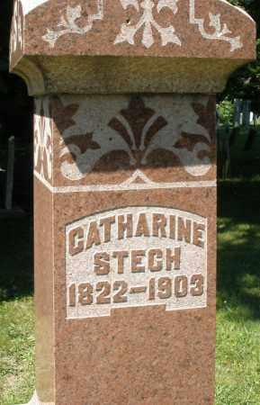 STECH, CATHARINE - Montgomery County, Ohio | CATHARINE STECH - Ohio Gravestone Photos