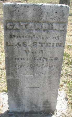 STEIN, CATHARINE - Montgomery County, Ohio | CATHARINE STEIN - Ohio Gravestone Photos