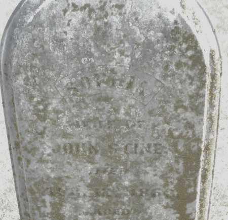 STINE, SOPHIA - Montgomery County, Ohio | SOPHIA STINE - Ohio Gravestone Photos