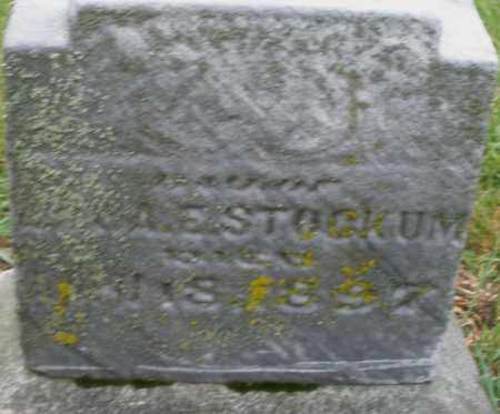 STOCKUM, MARY - Montgomery County, Ohio   MARY STOCKUM - Ohio Gravestone Photos