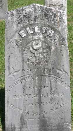 STUTESMAN, ELLIS - Montgomery County, Ohio   ELLIS STUTESMAN - Ohio Gravestone Photos