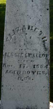 SWALLOW, ELIZABETH - Montgomery County, Ohio | ELIZABETH SWALLOW - Ohio Gravestone Photos