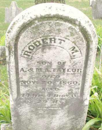 TAYLOR, ROBERT  M. - Montgomery County, Ohio | ROBERT  M. TAYLOR - Ohio Gravestone Photos