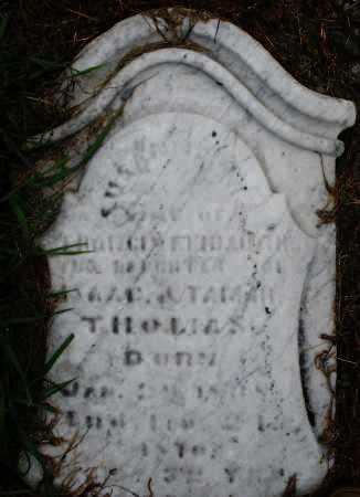 THOMAS, SUSANNAH - Montgomery County, Ohio | SUSANNAH THOMAS - Ohio Gravestone Photos