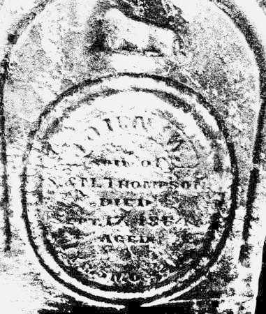 THOMPSON, JOHN W. - Montgomery County, Ohio | JOHN W. THOMPSON - Ohio Gravestone Photos