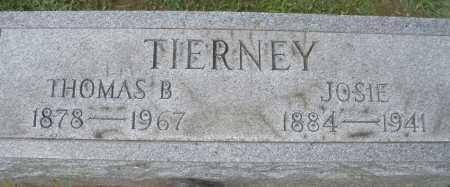 TIERNEY, THOMAS B. - Montgomery County, Ohio | THOMAS B. TIERNEY - Ohio Gravestone Photos
