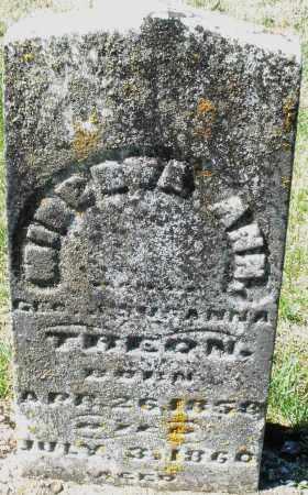 TREON, MINERVA ANN - Montgomery County, Ohio | MINERVA ANN TREON - Ohio Gravestone Photos