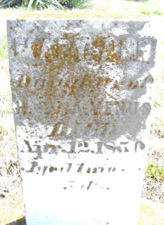 VENUS, MARY ANN - Montgomery County, Ohio | MARY ANN VENUS - Ohio Gravestone Photos