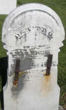 VOORHEES, DEWITT - Montgomery County, Ohio | DEWITT VOORHEES - Ohio Gravestone Photos