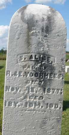 VOORHEES, S. ALICE - Montgomery County, Ohio | S. ALICE VOORHEES - Ohio Gravestone Photos