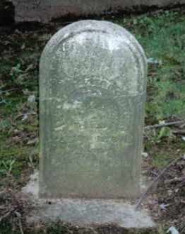 WAGGONER, LUCINDA - Montgomery County, Ohio | LUCINDA WAGGONER - Ohio Gravestone Photos