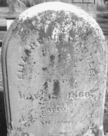 WARBLE, ELIZABETH - Montgomery County, Ohio | ELIZABETH WARBLE - Ohio Gravestone Photos