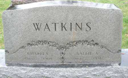 WATKINS, SALLIE A. - Montgomery County, Ohio | SALLIE A. WATKINS - Ohio Gravestone Photos