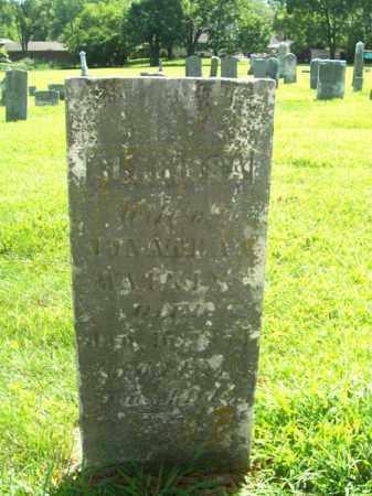 ALLEN WATKINS, CLARISSA - Montgomery County, Ohio | CLARISSA ALLEN WATKINS - Ohio Gravestone Photos