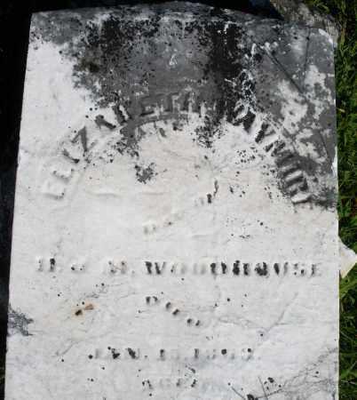 WOODHOUSE WAYMIRE, ELIZABETH - Montgomery County, Ohio | ELIZABETH WOODHOUSE WAYMIRE - Ohio Gravestone Photos