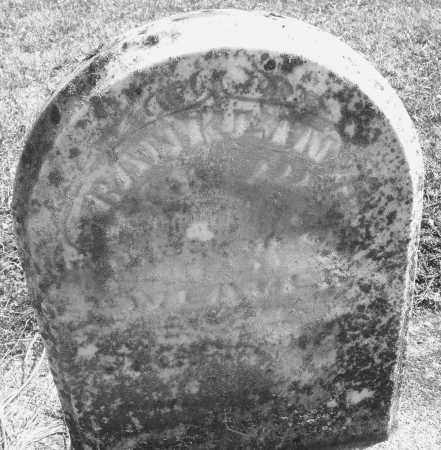 WEAVER, FRANKLIN H. - Montgomery County, Ohio   FRANKLIN H. WEAVER - Ohio Gravestone Photos