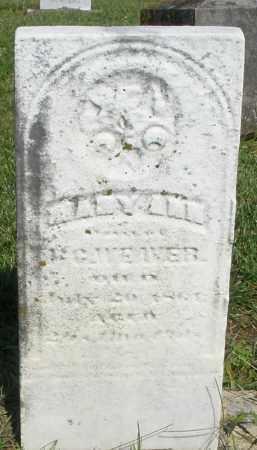 WEAVER, MARY ANN - Montgomery County, Ohio | MARY ANN WEAVER - Ohio Gravestone Photos