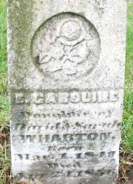 WHARTON, E. CAROLINE - Montgomery County, Ohio   E. CAROLINE WHARTON - Ohio Gravestone Photos