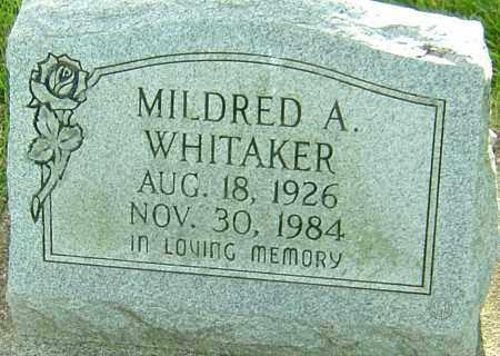 WHITAKER, MILDRED A - Montgomery County, Ohio   MILDRED A WHITAKER - Ohio Gravestone Photos